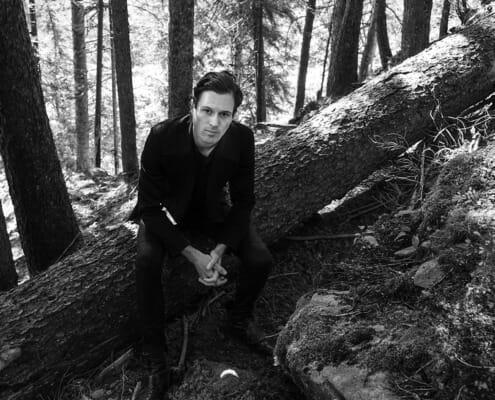 Dagobert on a tree trunk